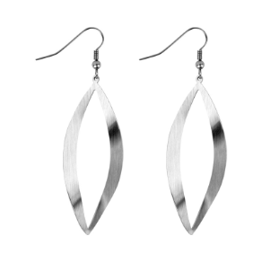 Matte 316L Stainless Steel Dangling Earrings From Inox