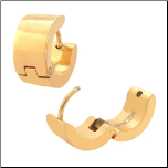 Inox Ip Gold Stainless Steel Huggie Earrings